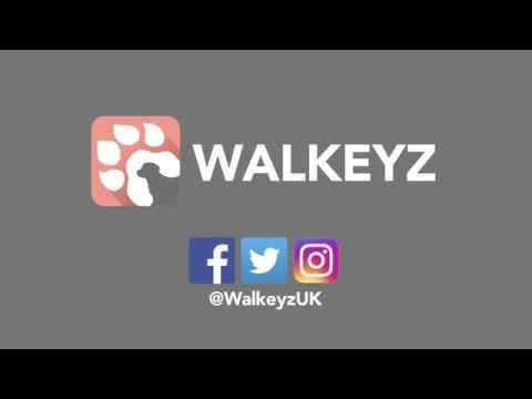 Walkeyz - How to get on demand dog walkers?