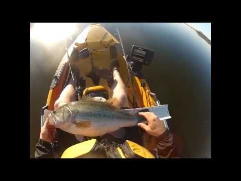 Lake Ray Roberts Big Bass