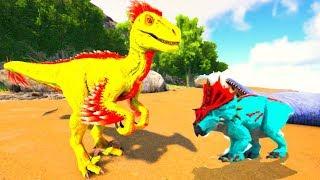 Jovem Utahraptor, Salvei Um Bebê De Triceratops Dos Predadores! Ark Survival Evolved