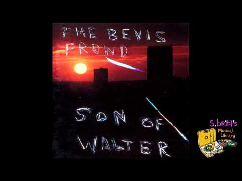 Bevis Frond - You Saw Me Coming