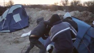 CalaisJungle January 15 2016