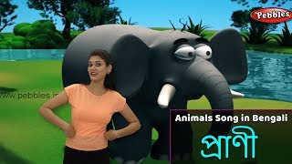 Animals Song in Bengali | Bengali Rhymes For Kids | Baby Rhymes Bengali | Bangla Children Songs