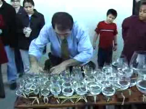 Glass Harp Video