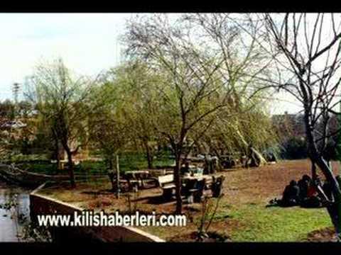 zeytin yaprağı yeşil  - kilis türküsü