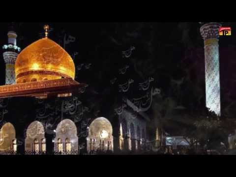 Mir Hasan Mir Noha 2014 [title] - Aa Rahi Hai Roza E Zainab (as) Say Hal Min Ki Sada video