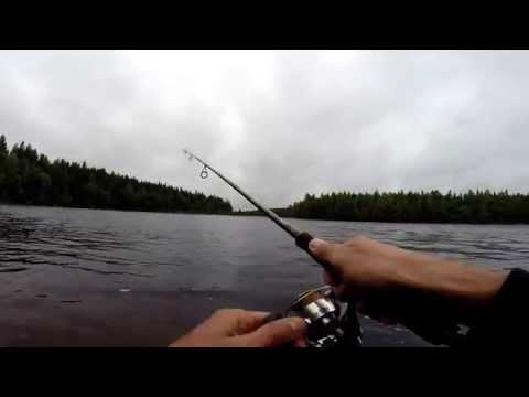 рыбалка на чирок кеми