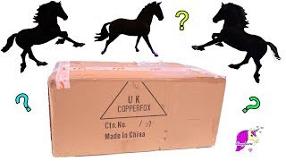 New Horses In Giant Box ! Copperfox Horse Haul Video