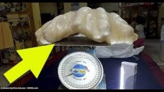 Fisherman From Palawan, Philippines Found The Largest Giant Pearl In The World Worth $100 Million