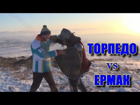 Превью к матчу Торпедо - Ермак