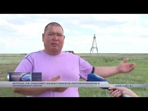 Житель РФ обвиняет казахстанских пограничников в краже скота