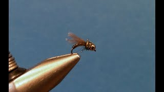 Tying The Little Olive Caddis Nymph