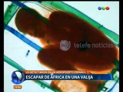 Un niño intentó escapar de África en una valija - Telefe Noticias