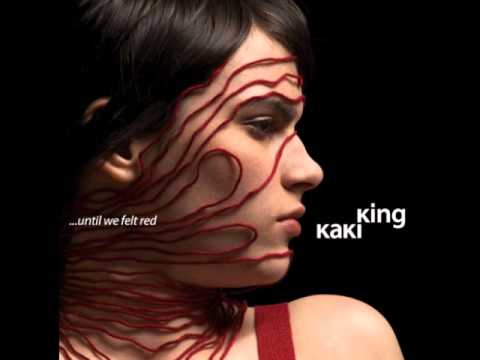 Kaki King - I Never Said I Love You