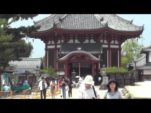 Nara Koen (Park) 奈良公園 - Japan part 2