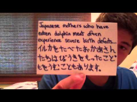 Ben's Taiji Dolphin Slaughter Story