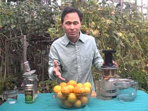 How to Make Lacto Fermented Lemon Cucumber Juice from Garden Fresh Cucumbers