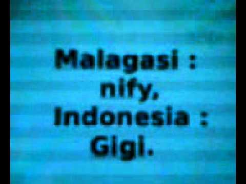 Ny fianarana Malagasy - indonezianina: HEAD - amin'ny feo