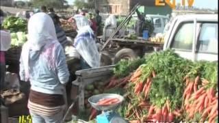 Eritrean Tigrinya News - 10 October 2013 by Eri-TV