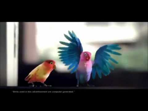 Kitkat Love Birds Latest Tv Ad - Aao Na Gale Lagao Na 2012 Hd Video.flv video