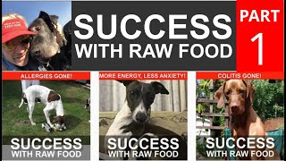 Amazing Successes with Feeding Dogs and Cats a Raw Food Diet   Part 1