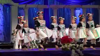 1st Place Winner Dance (Nkauj Hmong Npliag txuj) At MN Hmong Nwe Year 2018