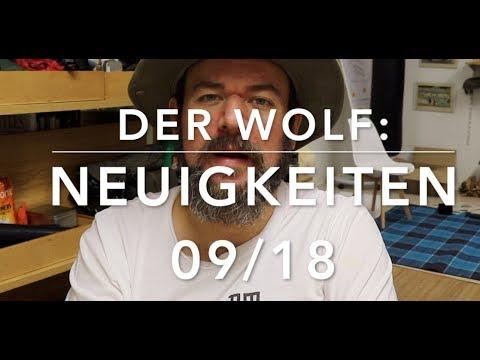 Neue Erkenntnisse zum Wolf (September 2018)