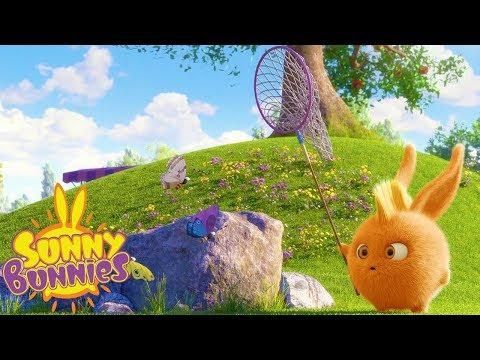 Cartoons for Children | SUNNY BUNNIES - CATCHING BUTTERFLIES | Funny Cartoons For Children