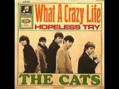 The Cats - What A Crazy Life