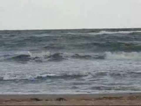 Нина Пантнелеева  У моря у синего моря.mp4