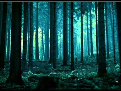 Estatic Fear - Des Nachtens Suss Gedone