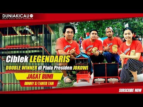Ciblek LEGENDARIS JAGAT BUMI Doube WINNER Di Piala Presiden JOKOWI