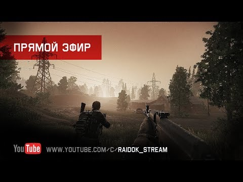 Escape From Tarkov - Stream by Raidok #177.