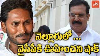 YS Jagan Gets Shock From Bommireddy Raghavendra Reddy Resigns From YCP | Nellore