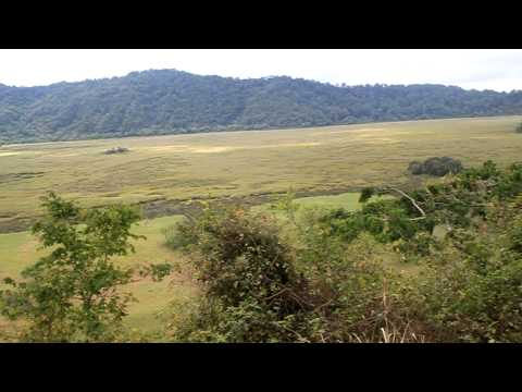 Safari in Arusha National Park