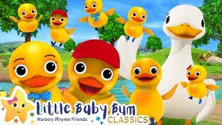 10 Little Ducks!   +More Kids Songs   Nursery Rhymes   Little Baby Bum