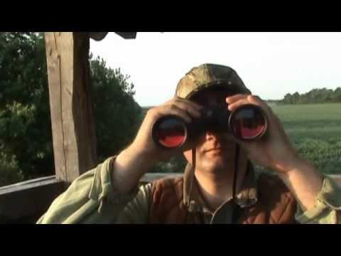 lov na srnjaka u motičini.wmv