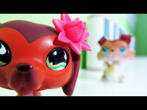 Littlest Pet Shop: Popular Episode #11: Revenge Isnt Always Sweet