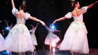 Festival Ballet Theatre - An Ode to Snow
