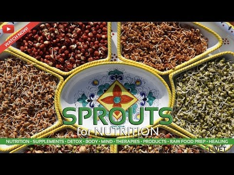 SPROUTING SEEDS & BEANS for FOOD from SPROUTS with TOM WHITMIRE on LIVET.tv | 7of10