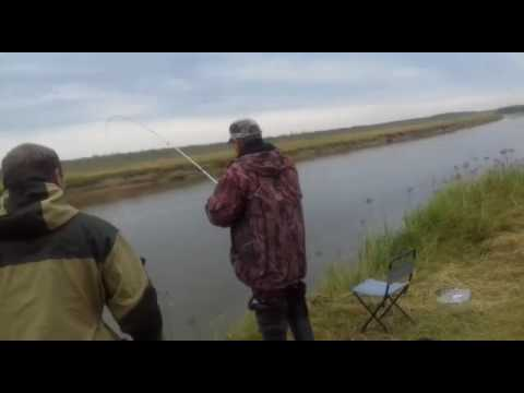 рыбалка город ишим ишимский район видео