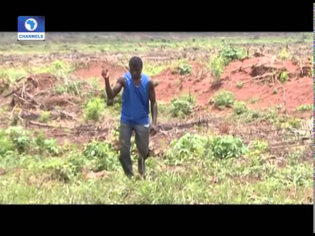 Earth File: Increasing Food Production Through Systemic Farming PT2