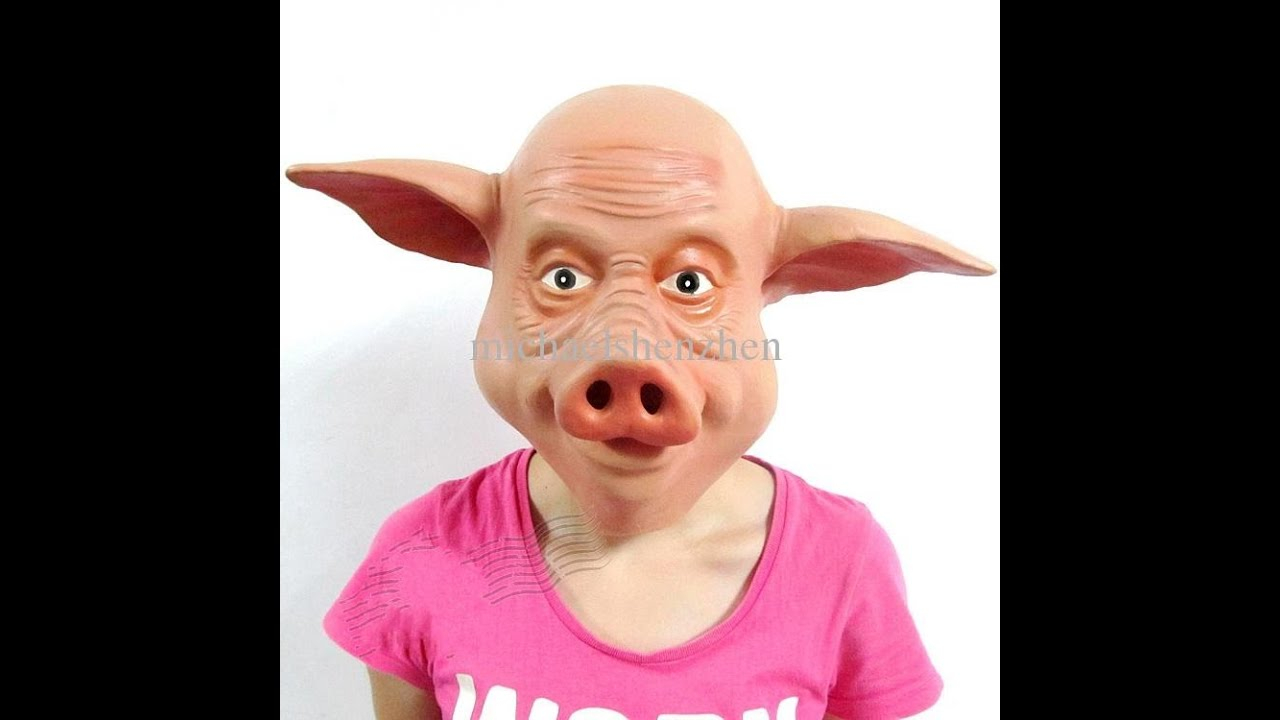 How to Make a Pig Costume
