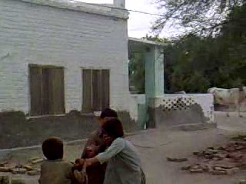 Aa Bhi Ja Sanam-Sindhi fighting.mp4