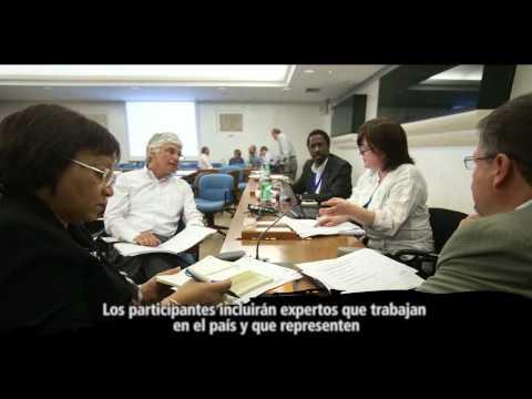 Encuesta de referencia corporativa: trabajando con la FAO para un mundo mejor