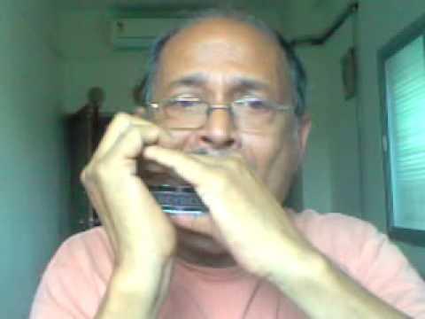 zindagi ke safar mein guzar jaate hain - harmonica