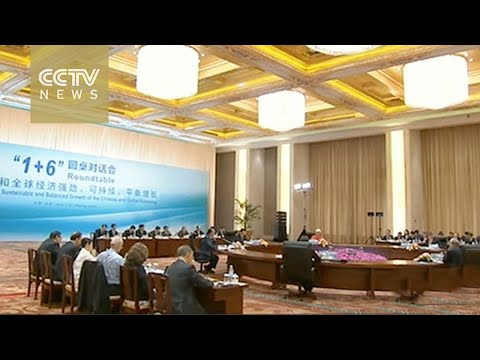 Premier Li holds roundtable to discuss global economy