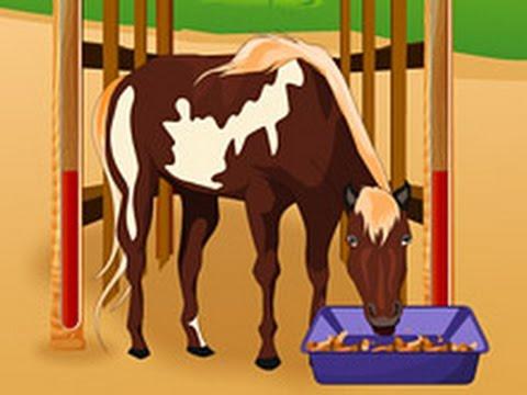 Как создать настоящую лошадь