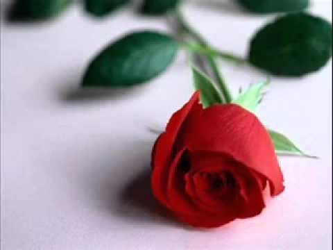 ♥SaB RiShTe NaAtE Main chor dunby rahat fateh ali khan........(...