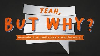 Yeah, But Why? - Church - Pastor Chris Haggard