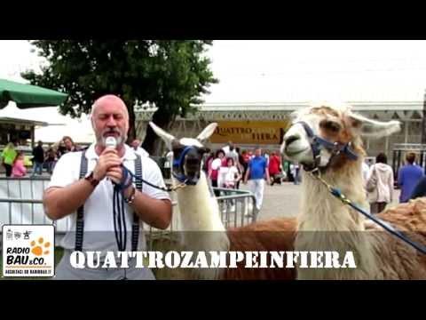 Quattrozampeinfiera 2013 – The best of